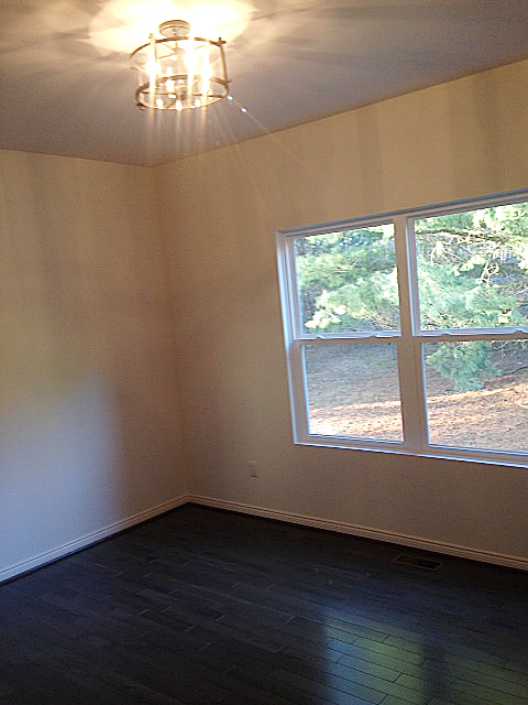 Den area with dark stained hard wood flooring
